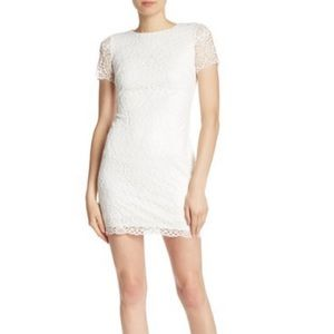 NWT Laundry by Shelli Segal Lace Mini Dress